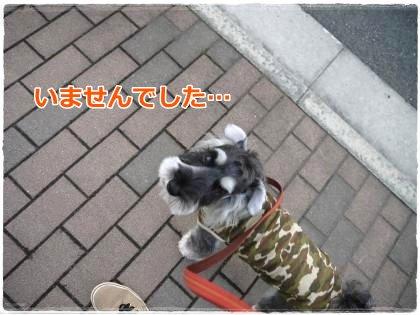 6_13+010_convert_20120613184501.jpg