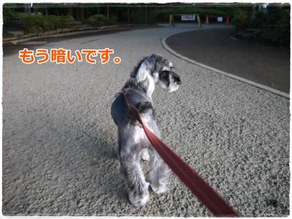 6_14+006_convert_20120614232655.jpg
