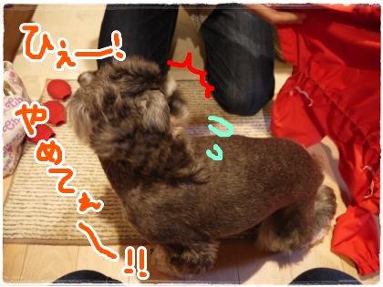 6_16+001_convert_20120616212437.jpg