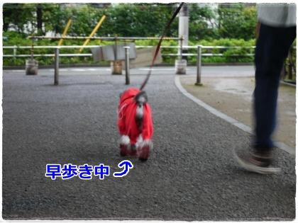 6_16+005_convert_20120616212533.jpg