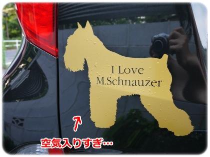 6_17+052_convert_20120620095612.jpg