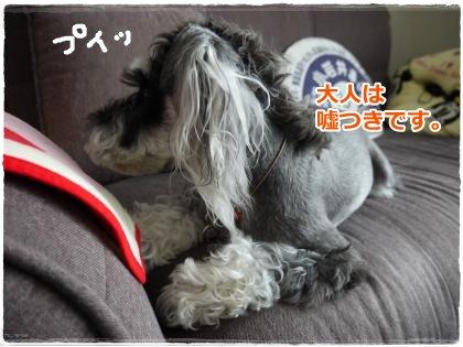 6_25+004_convert_20120703221807.jpg