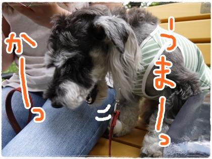 6_25+013_convert_20120627145444.jpg