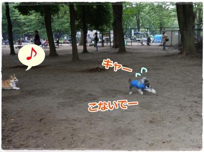 6_25+085_convert_20120627150619.jpg