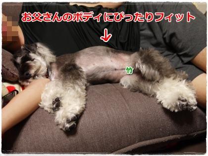6_25+145_convert_20120628150200.jpg