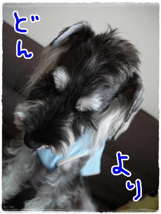 6_30+013_convert_20120630104925.jpg