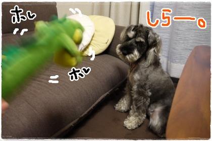 6_6+015_convert_20120607185132.jpg