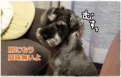 6_6+015_convert_20120607185228.jpg