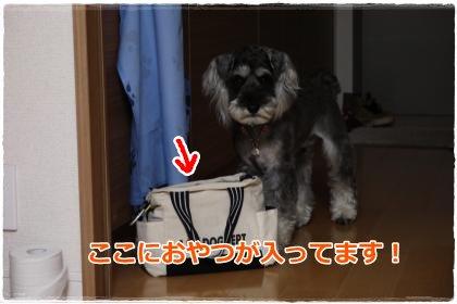 6_6+017_convert_20120606194718.jpg