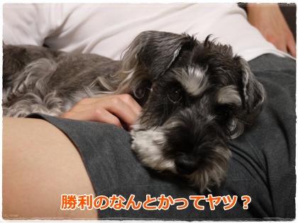 6_9+003_convert_20120609145744.jpg
