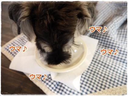 7_1+007_convert_20120701220121.jpg