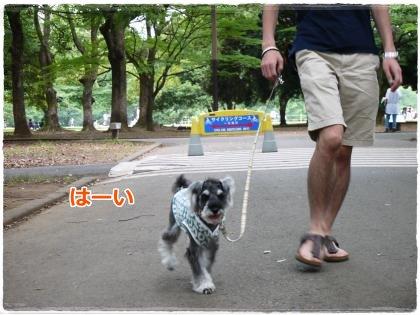 7_1+012_convert_20120701172852.jpg