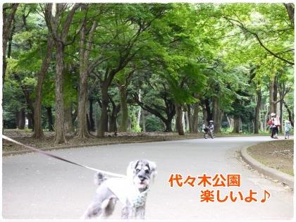 7_1+021_convert_20120701172106.jpg