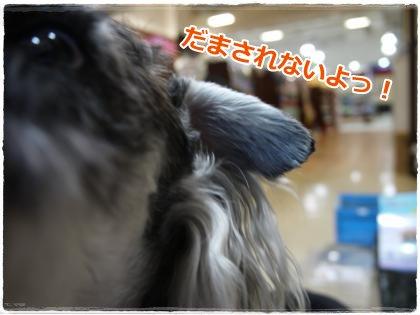 7_12+011_convert_20120712222920.jpg