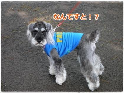 7_14+003_convert_20120714203024.jpg