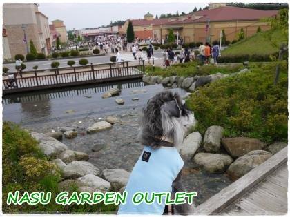 7_16+028_convert_20120716110949.jpg