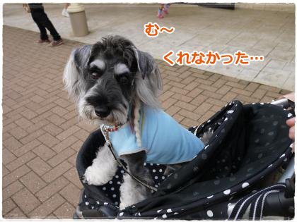 7_16+041_convert_20120716111327.jpg