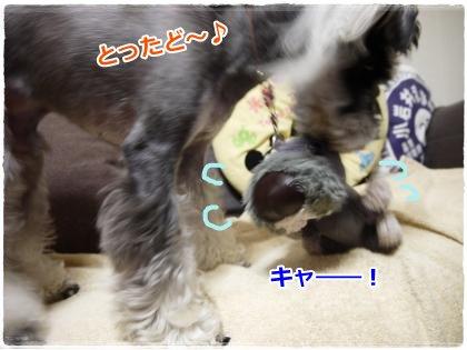 7_18+011_convert_20120718205557.jpg