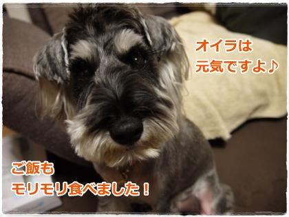 7_20+006_convert_20120720202129.jpg