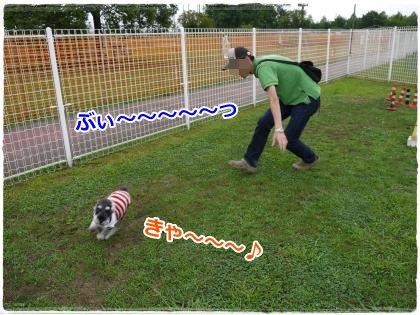 7_22+022_convert_20120724213319.jpg