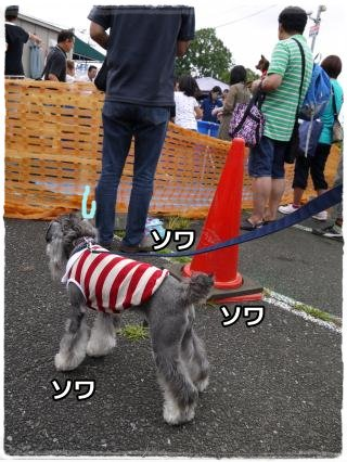 7_22+058_convert_20120724213858.jpg