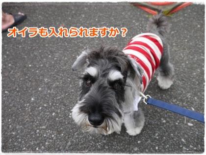 7_22+059_convert_20120724213919.jpg