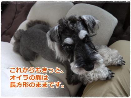 7_5+007_convert_20120705224949.jpg