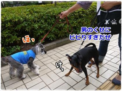 7_5+014_convert_20120705214602.jpg