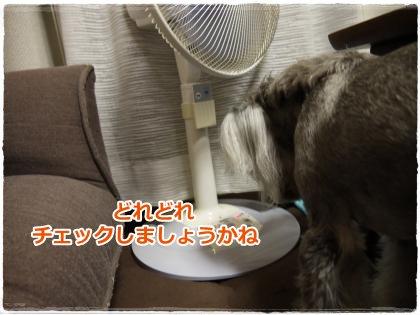 7_8+004_convert_20120711232438.jpg