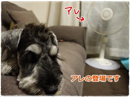 7_8+009_convert_20120711232530.jpg