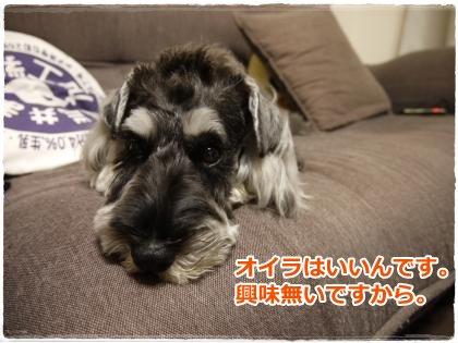 7_8+011_convert_20120711232559.jpg