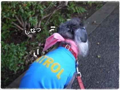 8_1+022_convert_20120801215023.jpg