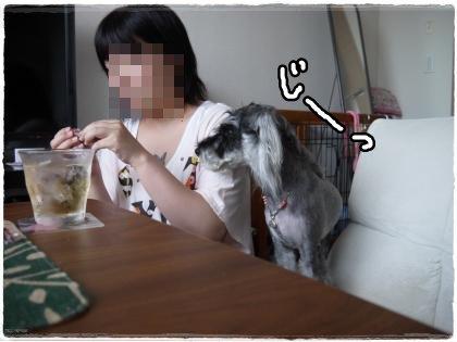8_19+053_convert_20120822120210.jpg