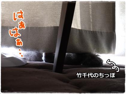 8_4+005_convert_20120805215855.jpg
