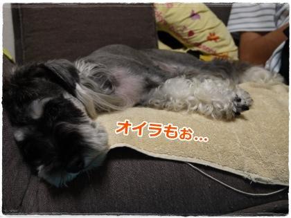 8_7+012_convert_20120808002220.jpg