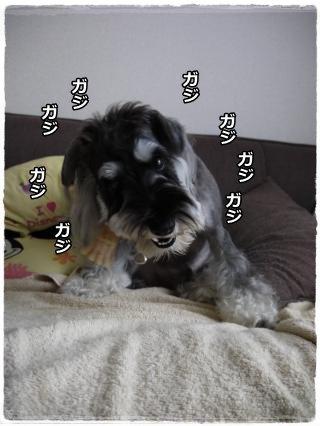 8_9+032_convert_20120809202830.jpg