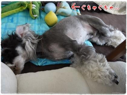 9_15+002_convert_20120915203137.jpg