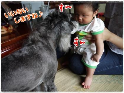 9_23+041_convert_20120926001943.jpg