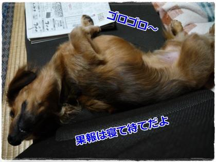 9_23+109_convert_20120924215758.jpg