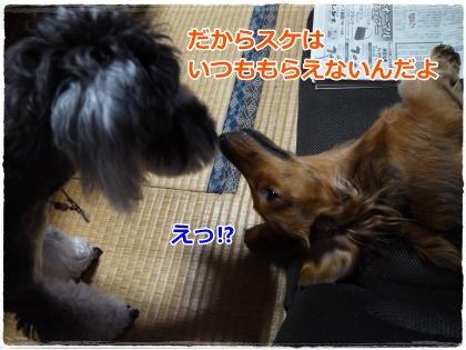 9_23+112_convert_20120924215833.jpg
