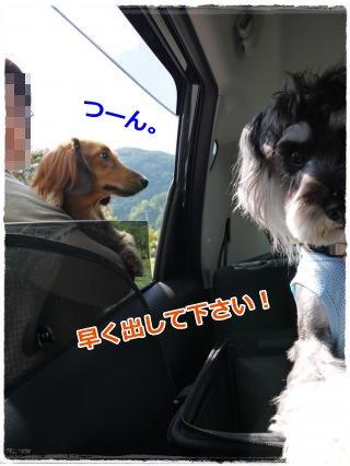 9_23+164_convert_20120928203618.jpg
