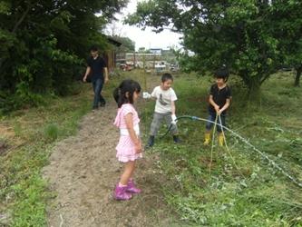 子どもたちによる散水作業、大きくなるように願いを込めて・・