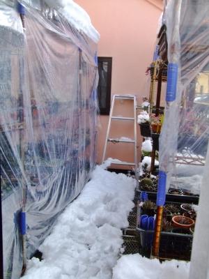 45年振りの東京都心部大雪22cm積雪の翌朝~2階の凍らないベランダも積りましたが、もう溶け始めました♪何とかなりそうです(~_~)午前8時頃の様子~2014.08.09