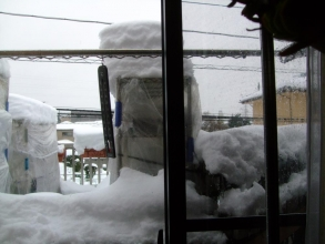 一夜明け雪が雨に変わり積った雪がなんとか溶けはじめました(~_~)ふ~・・・一安心です♪2014.02.15.09:25