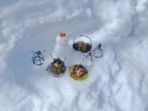 ビニールハウスから落ちた大雪残雪がいっぱい~こっそり多肉人形のパーティーちゅう♪一緒に遊んじゃいました(^◇^)2014.02.16