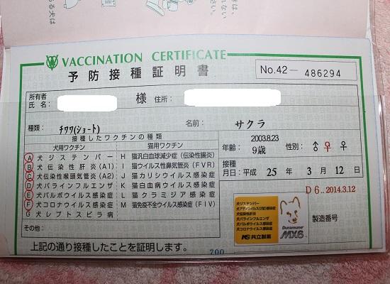0312さくワクチン①