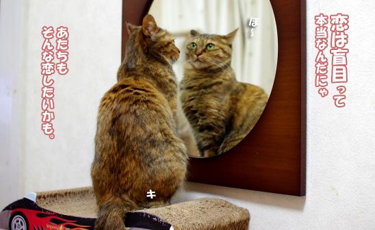 キララ鏡の中で夢見る少女6のコピー