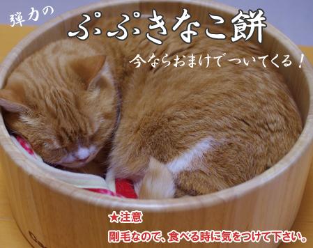 ぷぷもい4343コピー