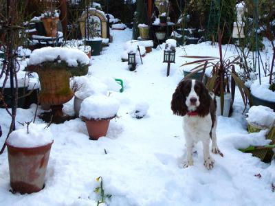 2013年初雪toppy