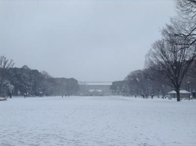 2014-02-08-ueno.jpg
